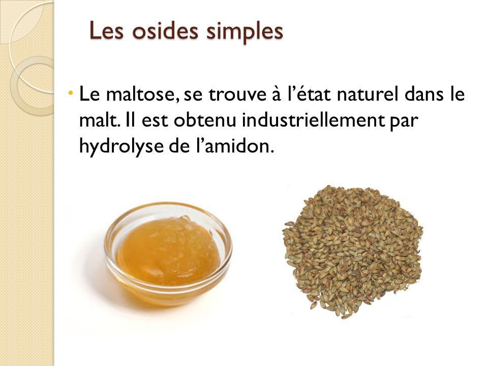 Les osides simples Le maltose, se trouve à l'état naturel dans le malt.