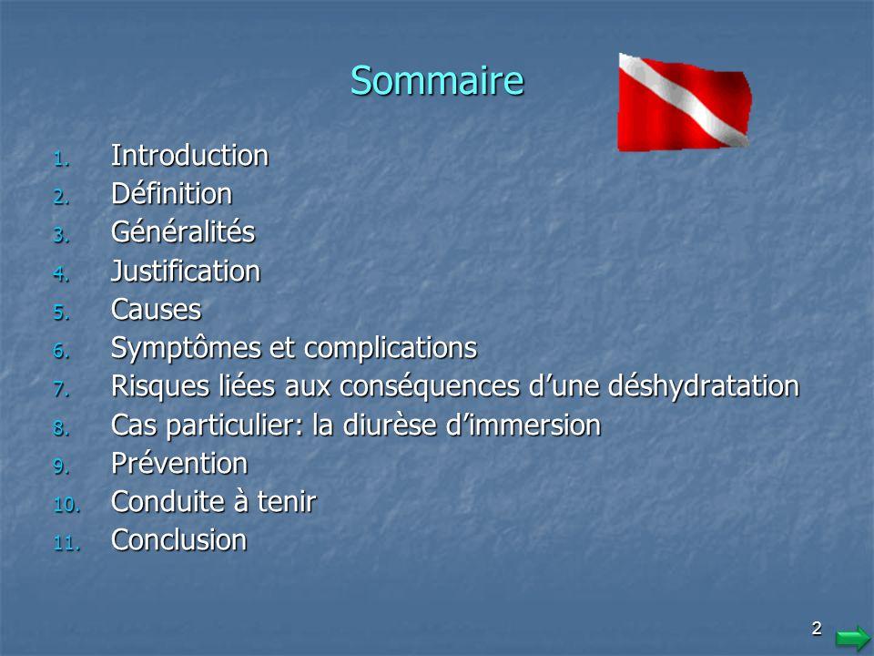 Sommaire Introduction Définition Généralités Justification Causes