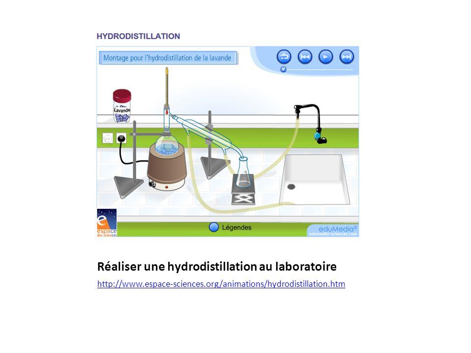 Réaliser une hydrodistillation au laboratoire