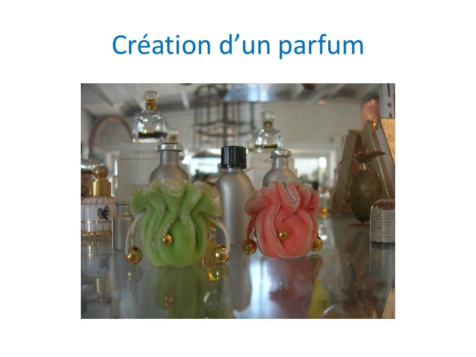 Création d'un parfum
