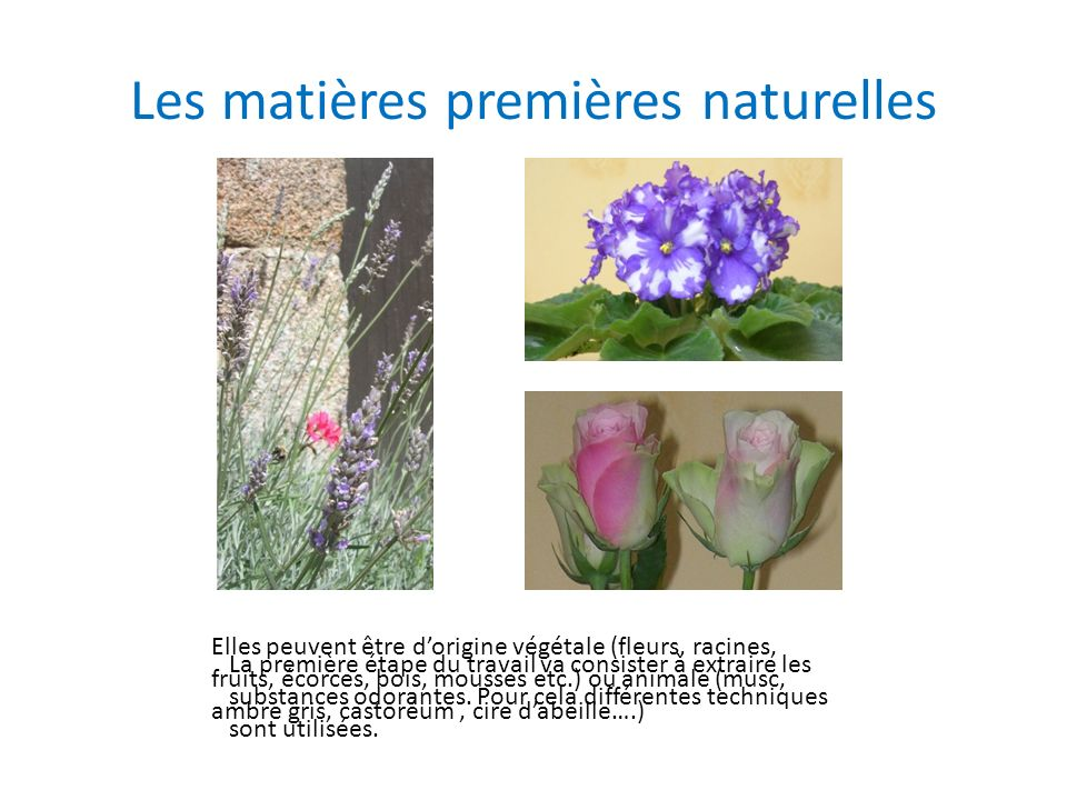 Les matières premières naturelles