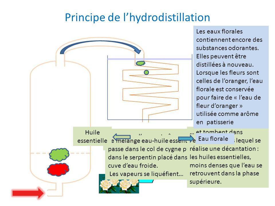 Principe de l'hydrodistillation