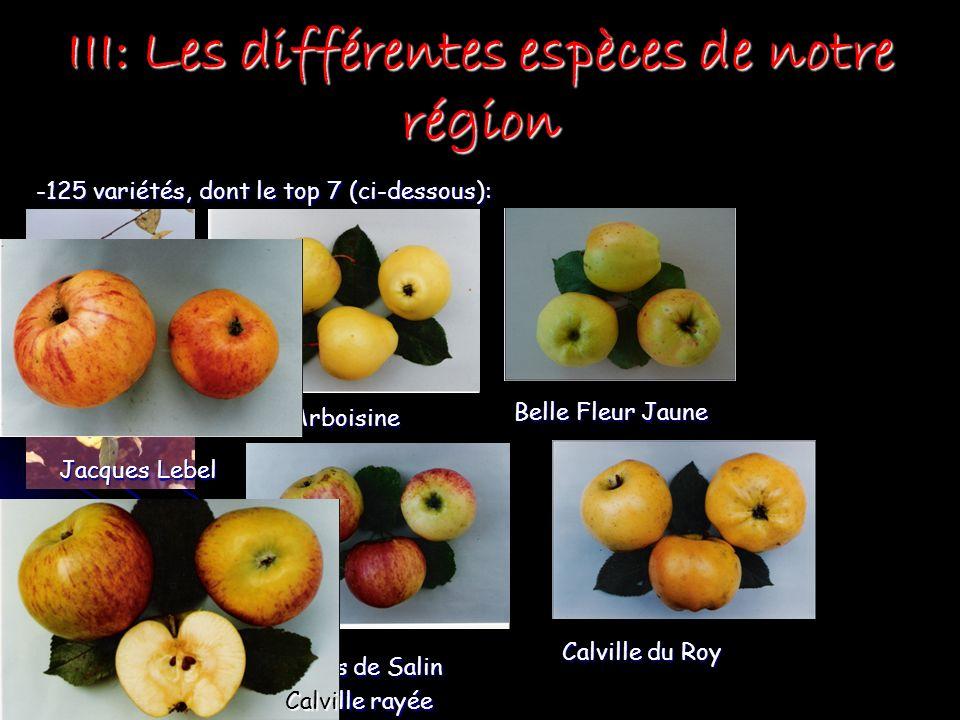 III: Les différentes espèces de notre région