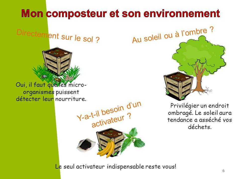 Mon composteur et son environnement