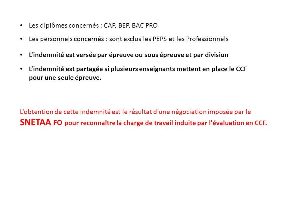 Les diplômes concernés : CAP, BEP, BAC PRO