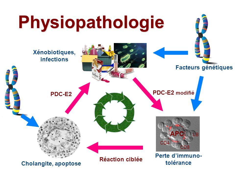 Perte d'immuno-tolérance Xénobiotiques, infections