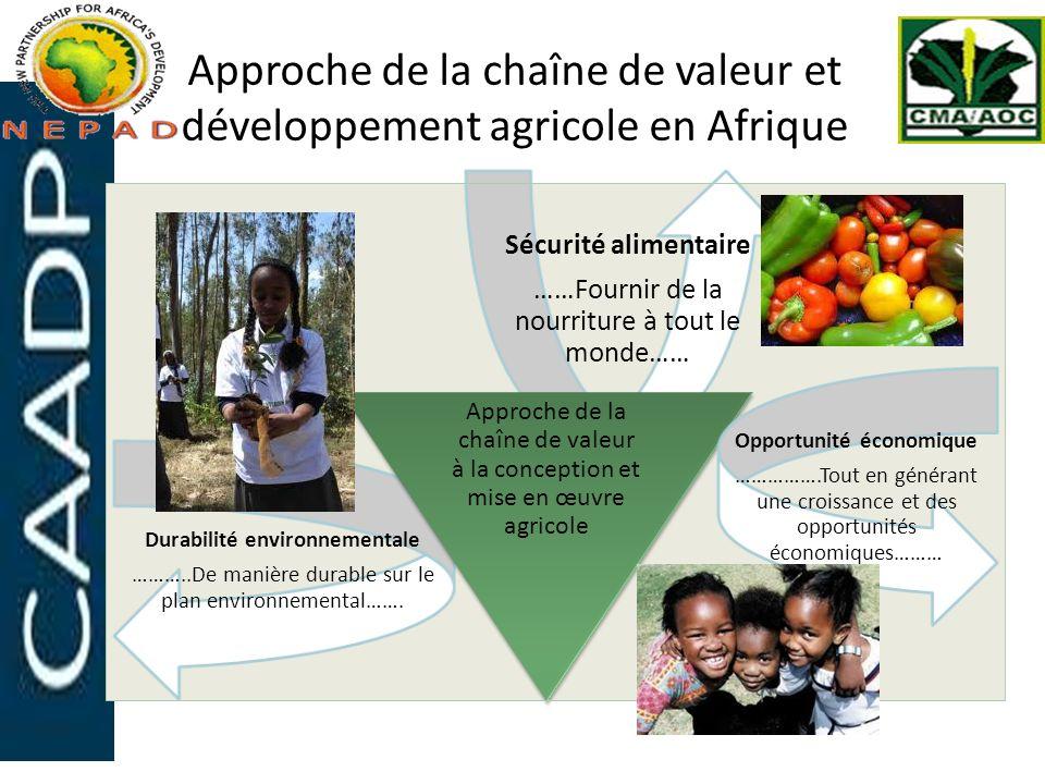 Approche de la chaîne de valeur et développement agricole en Afrique