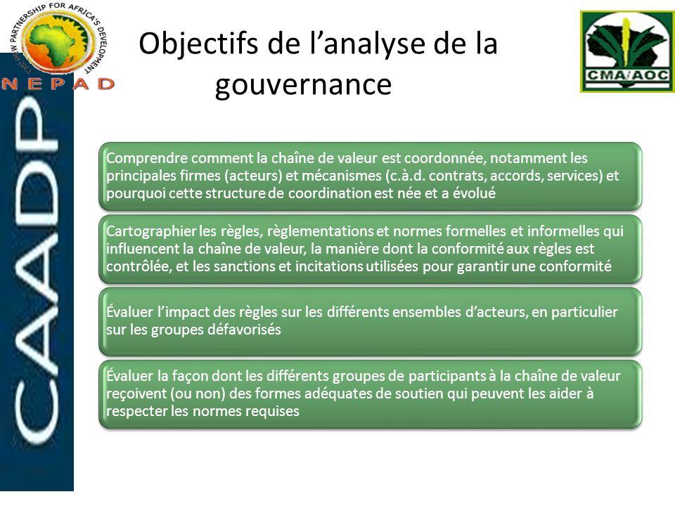 Objectifs de l'analyse de la gouvernance
