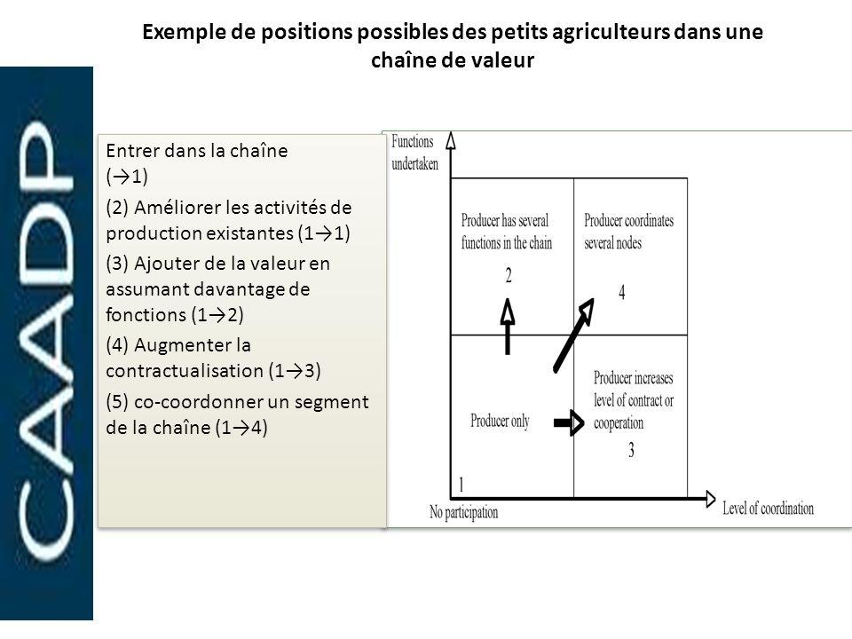Exemple de positions possibles des petits agriculteurs dans une chaîne de valeur