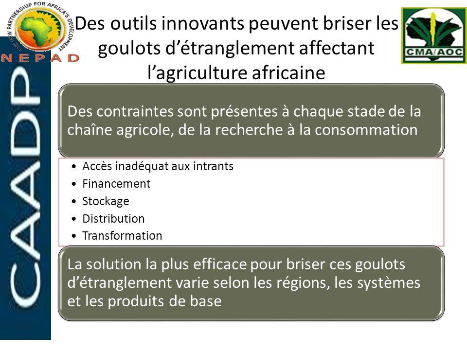 Des outils innovants peuvent briser les goulots d'étranglement affectant l'agriculture africaine