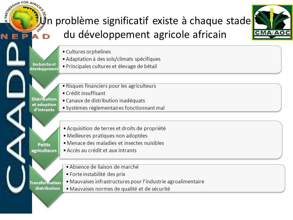 Un problème significatif existe à chaque stade du développement agricole africain
