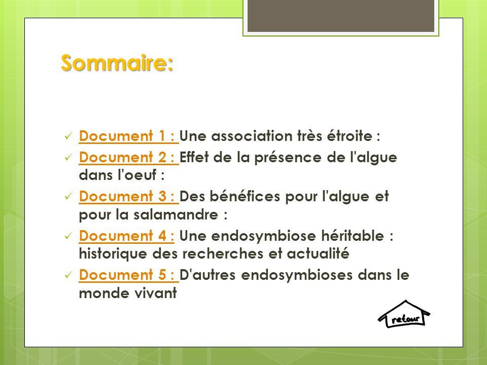Sommaire: Document 1 : Une association très étroite :
