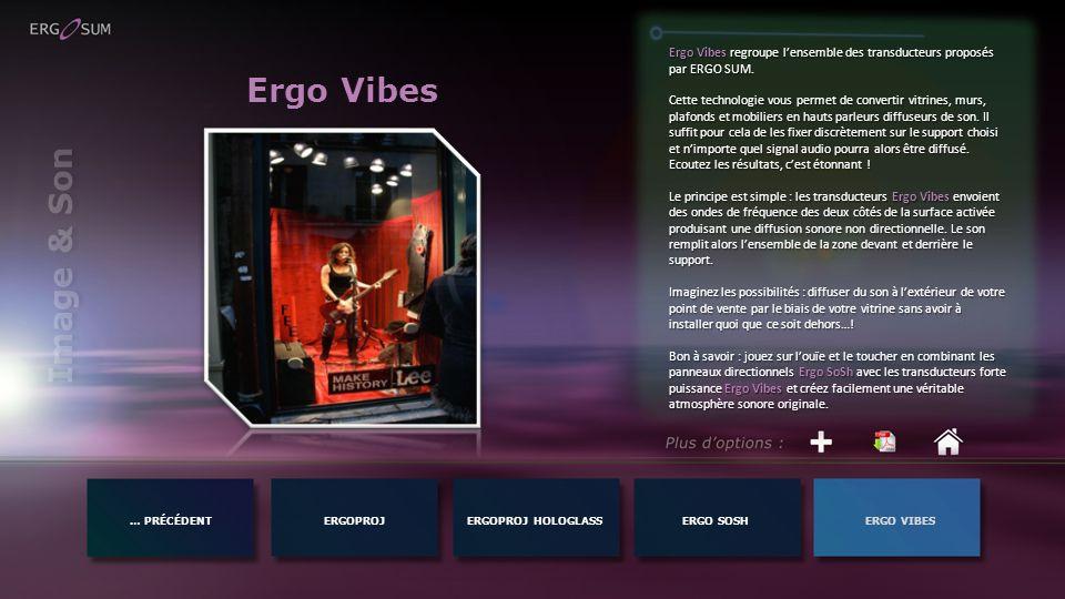 Ergo Vibes regroupe l'ensemble des transducteurs proposés par ERGO SUM.