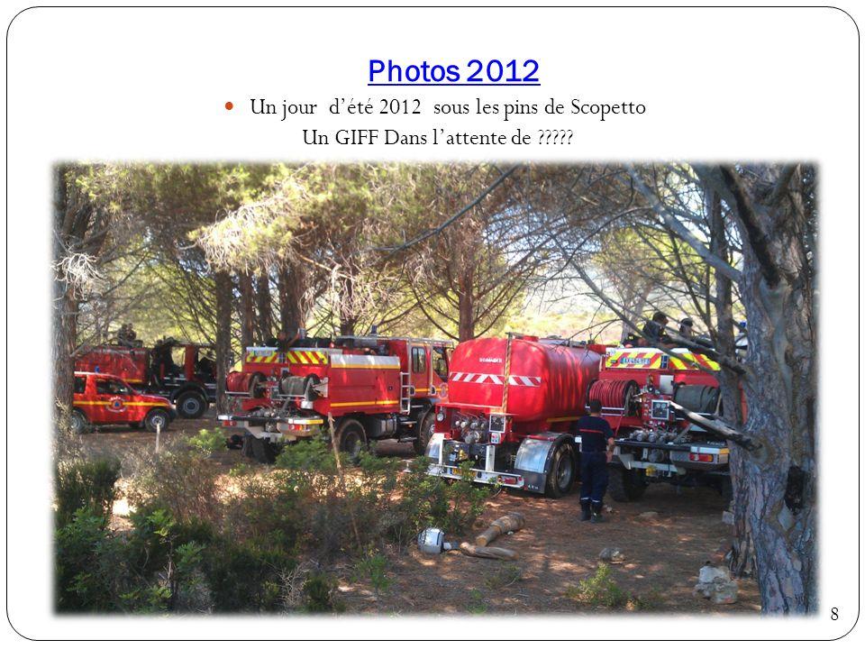 Photos 2012 Un jour d'été 2012 sous les pins de Scopetto