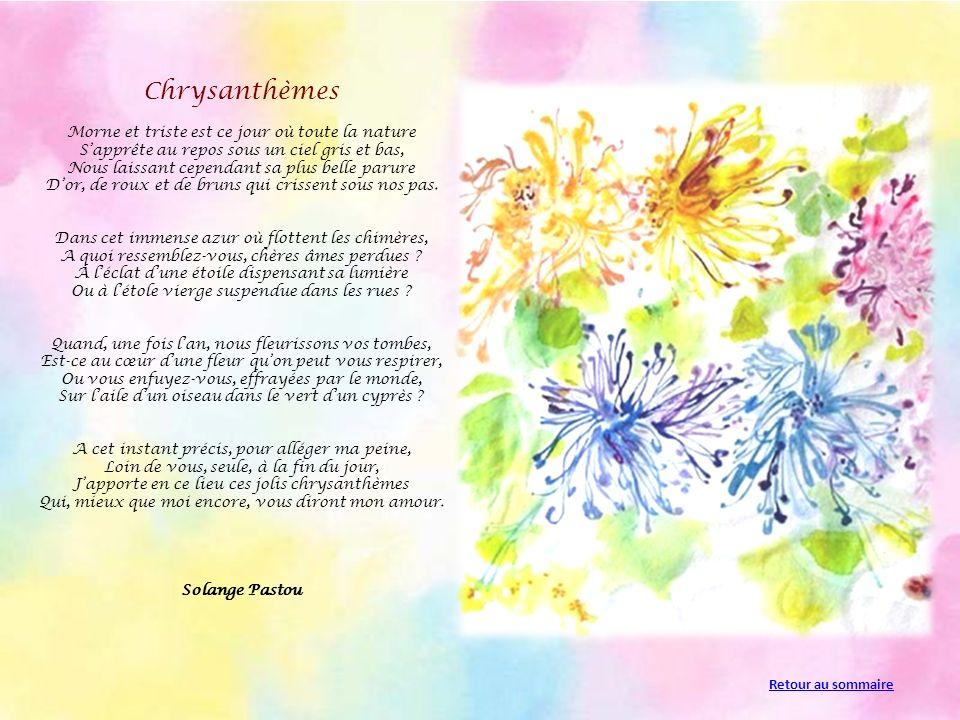 Chrysanthèmes Morne et triste est ce jour où toute la nature