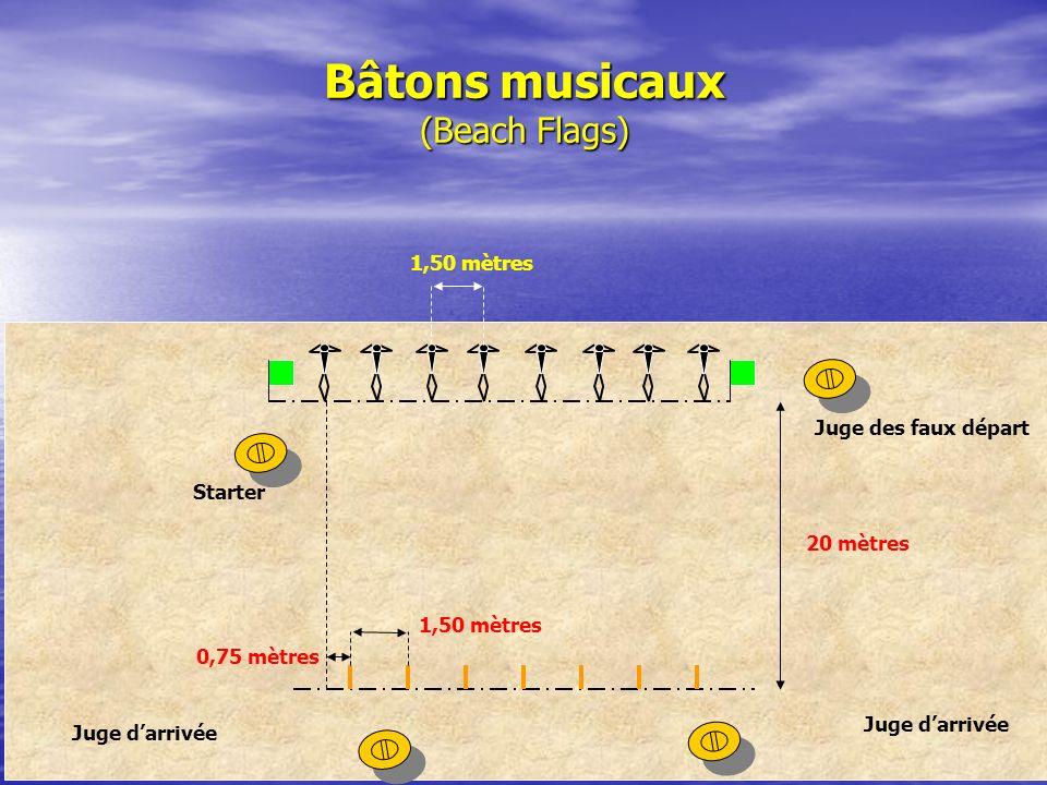 Bâtons musicaux (Beach Flags)