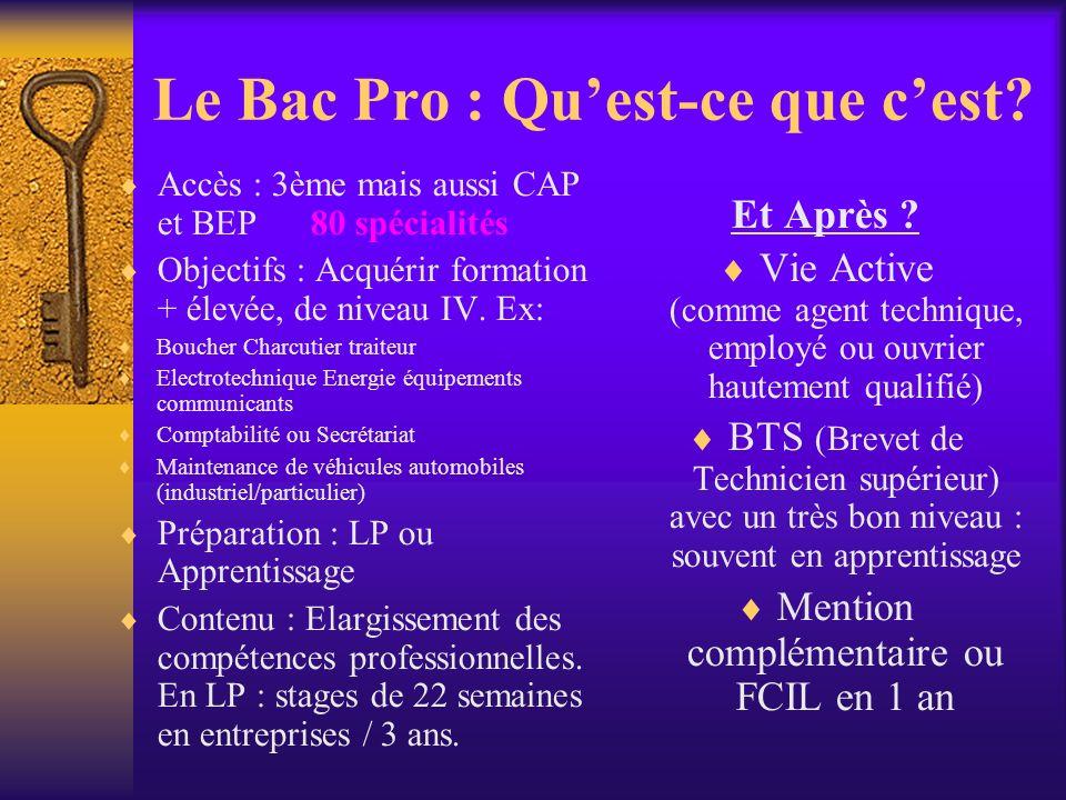 Le Bac Pro : Qu'est-ce que c'est