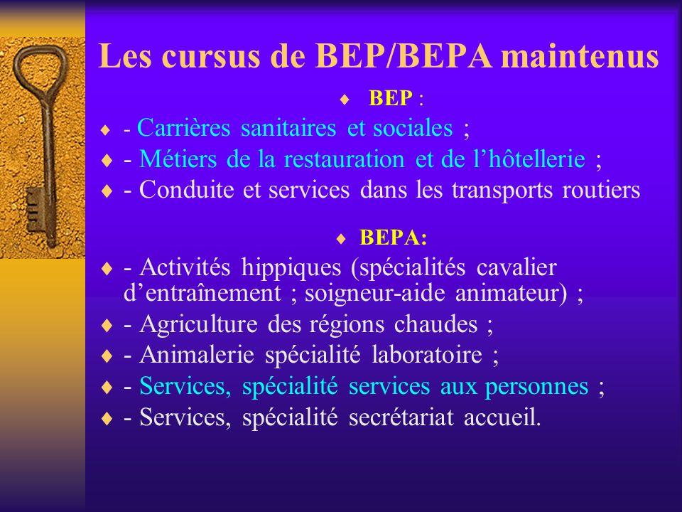Les cursus de BEP/BEPA maintenus
