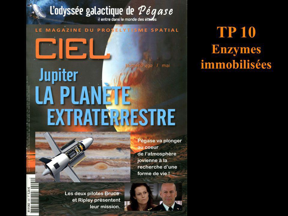 TP 10 Enzymes immobilisées titre