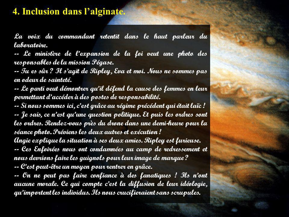4.1 4. Inclusion dans l'alginate.