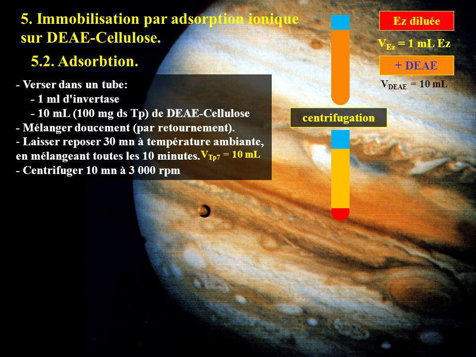 5.2 5. Immobilisation par adsorption ionique sur DEAE-Cellulose.