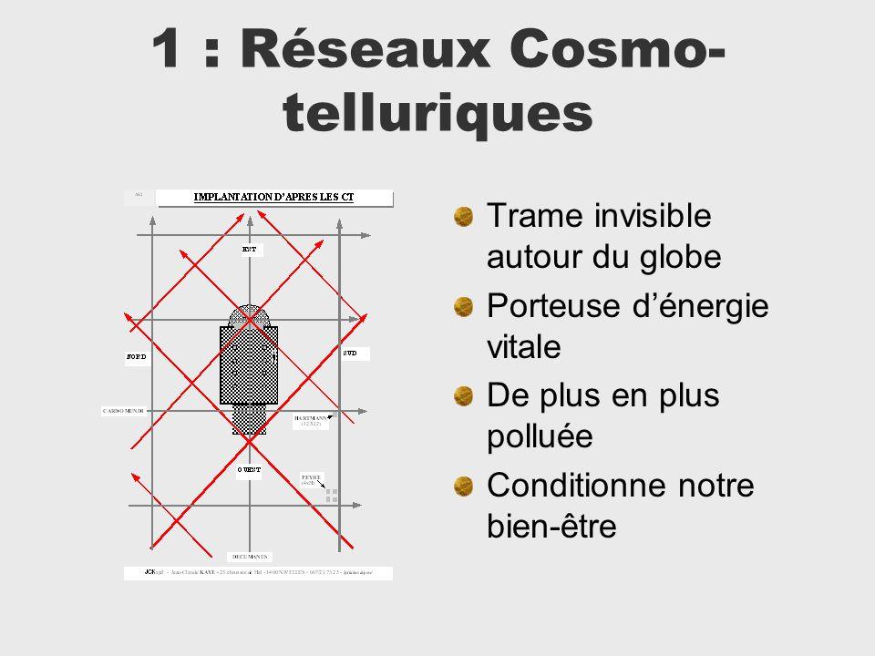 1 : Réseaux Cosmo-telluriques