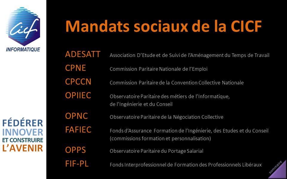 Mandats sociaux de la CICF