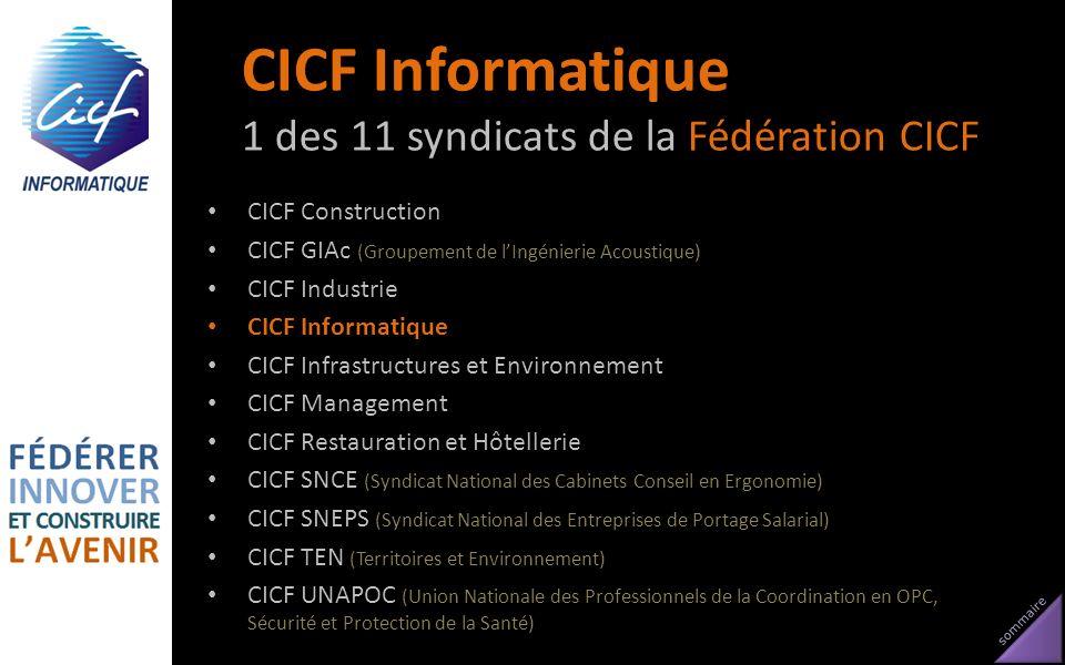 CICF Informatique 1 des 11 syndicats de la Fédération CICF