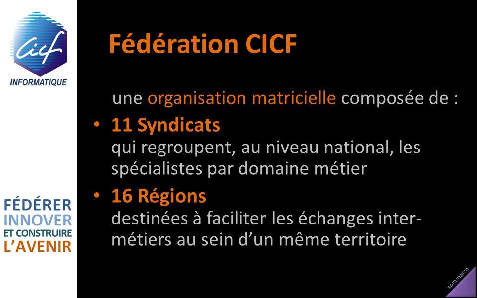 Fédération CICF une organisation matricielle composée de : 11 Syndicats qui regroupent, au niveau national, les spécialistes par domaine métier.