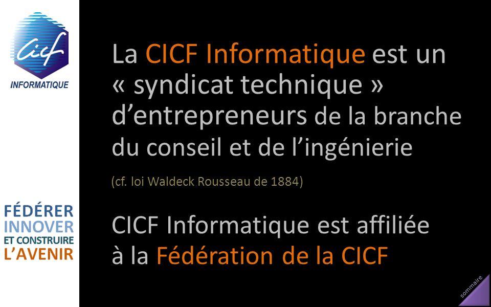 La CICF Informatique est un « syndicat technique » d'entrepreneurs de la branche du conseil et de l'ingénierie (cf. loi Waldeck Rousseau de 1884)