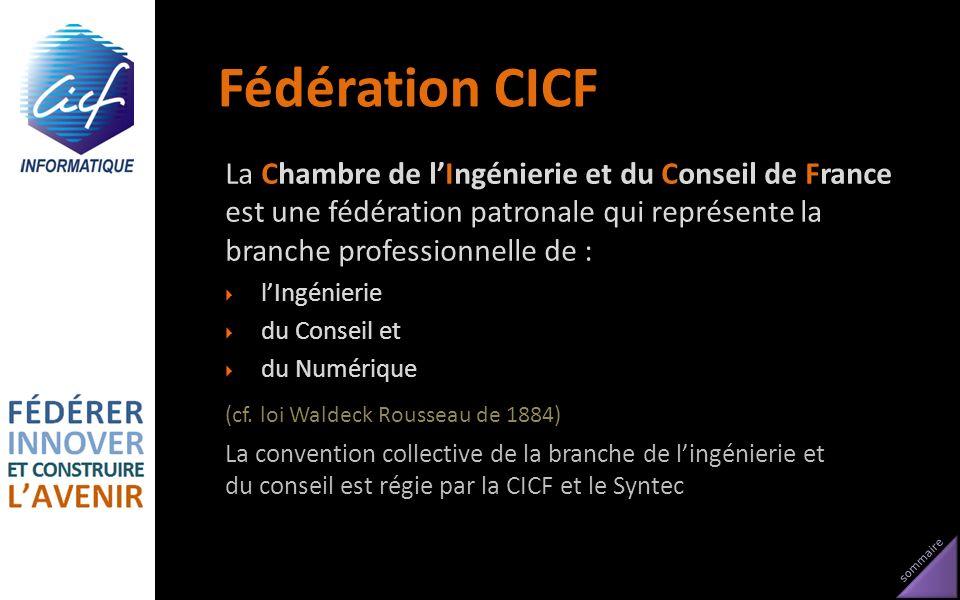Fédération CICF La Chambre de l'Ingénierie et du Conseil de France est une fédération patronale qui représente la branche professionnelle de :