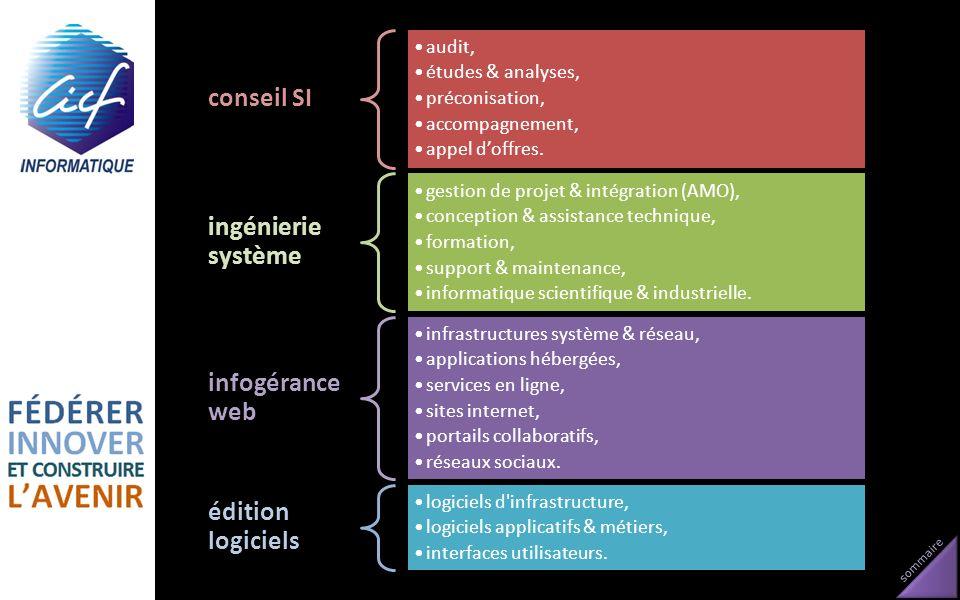 conseil SI ingénierie système infogérance web édition logiciels audit,