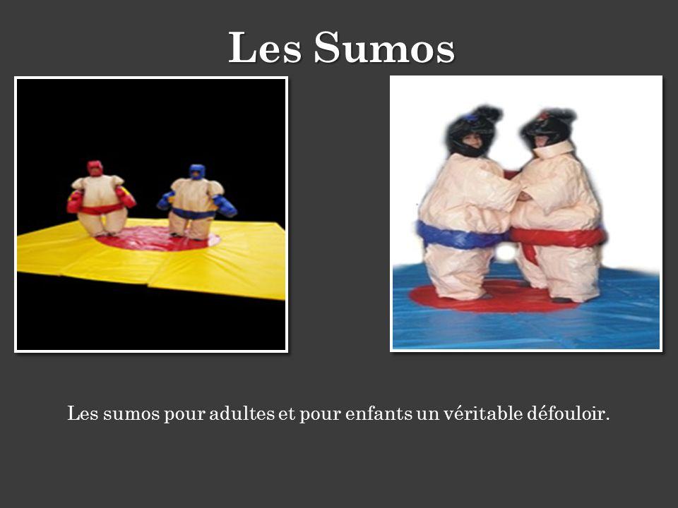 Les sumos pour adultes et pour enfants un véritable défouloir.