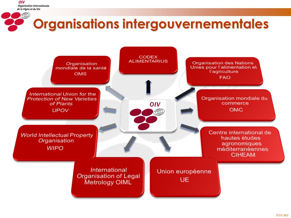 Organisations intergouvernementales