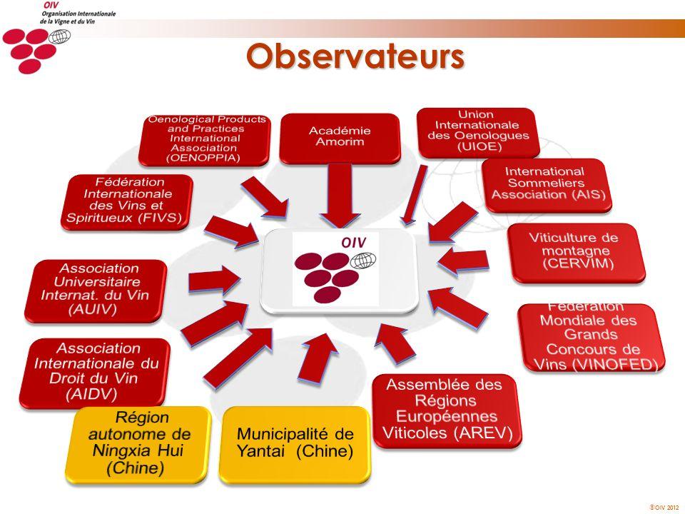 Observateurs Académie Amorim