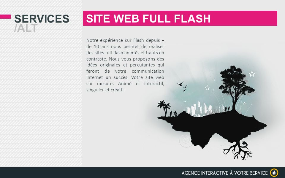 SITE WEB FULL FLASH Services /alt