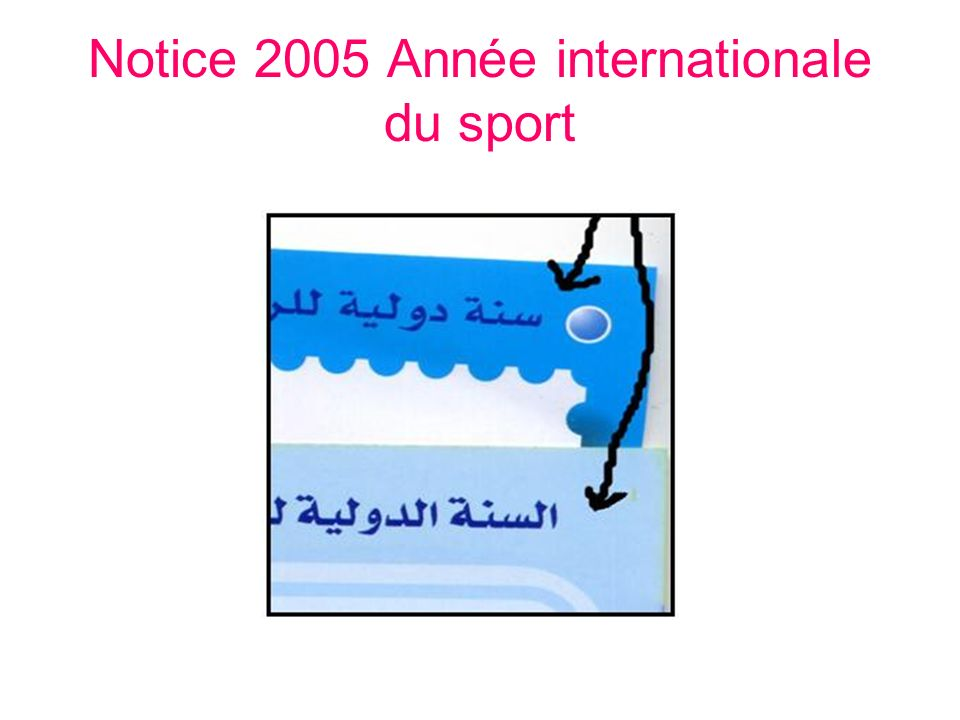 Notice 2005 Année internationale du sport