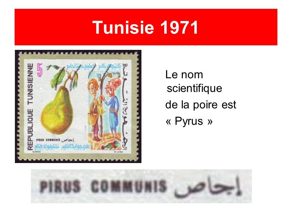 Tunisie 1971 Le nom scientifique de la poire est « Pyrus »