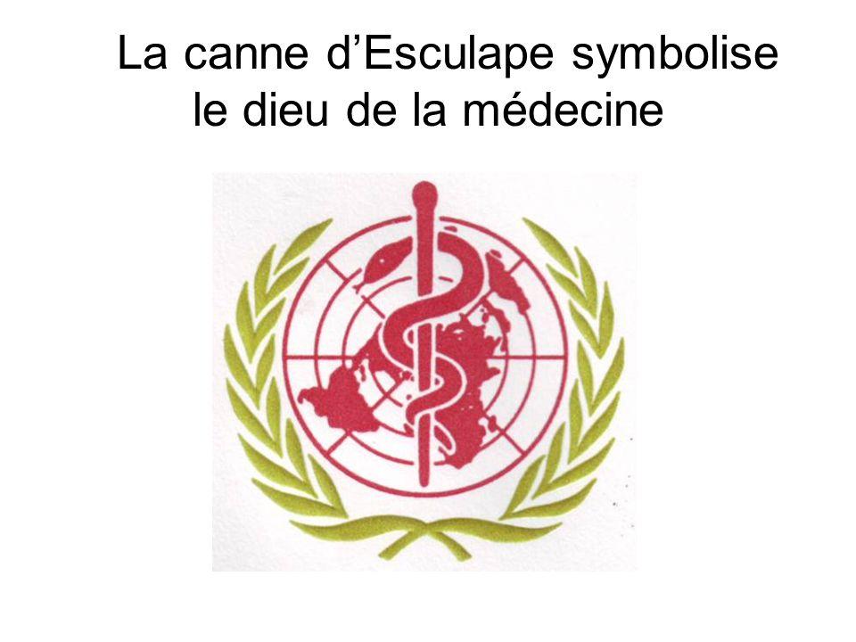 La canne d'Esculape symbolise le dieu de la médecine