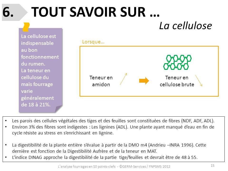 6. TOUT SAVOIR SUR … La cellulose