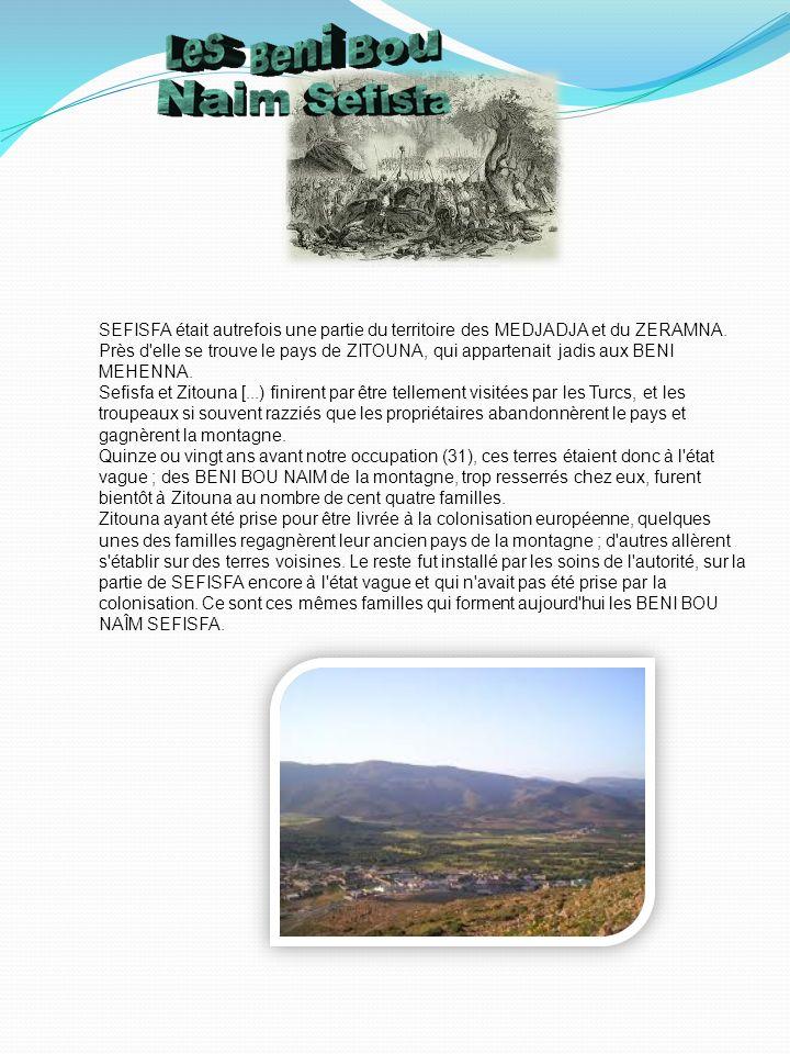 SEFISFA était autrefois une partie du territoire des MEDJADJA et du ZERAMNA. Près d elle se trouve le pays de ZITOUNA, qui appartenait jadis aux BENI MEHENNA.