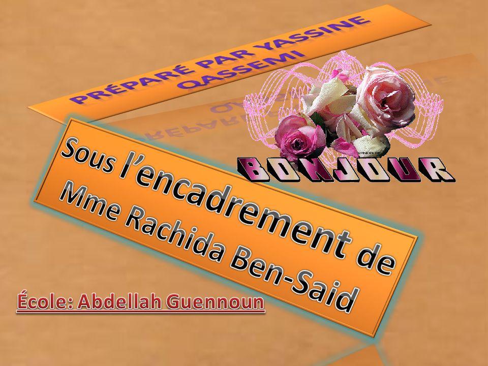 préparé par Yassine qassemi Sous l'encadrement de Mme Rachida Ben-Said
