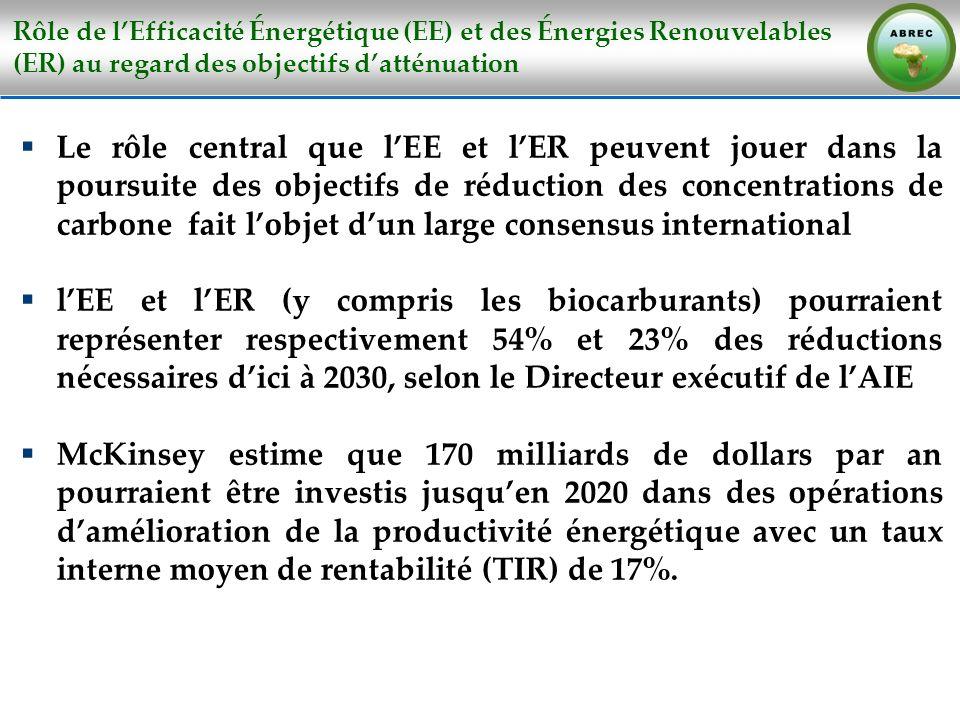 Rôle de l'Efficacité Énergétique (EE) et des Énergies Renouvelables (ER) au regard des objectifs d'atténuation