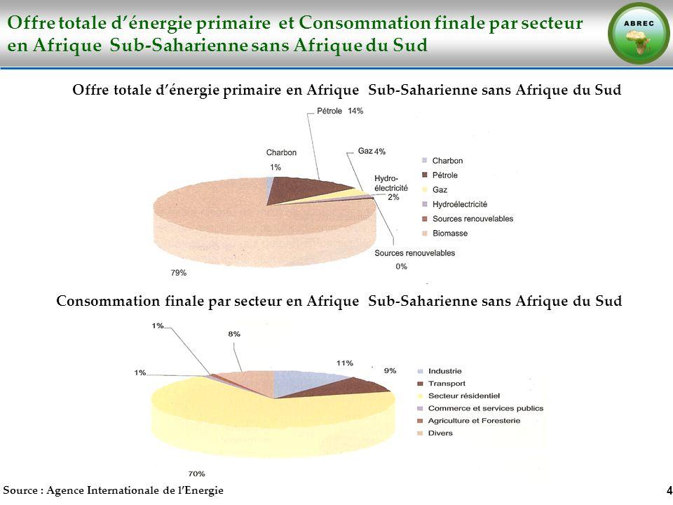 Offre totale d'énergie primaire et Consommation finale par secteur en Afrique Sub-Saharienne sans Afrique du Sud