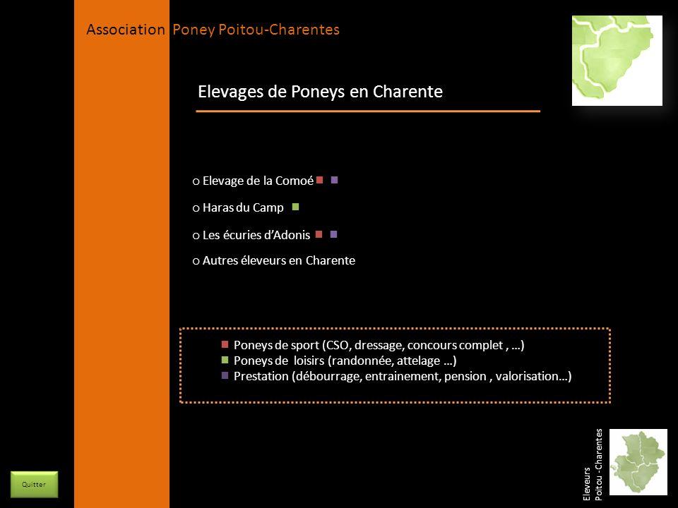 Elevages de Poneys en Charente