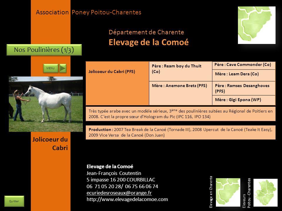 Elevage de la Comoé Département de Charente Nos Poulinières (1/3)