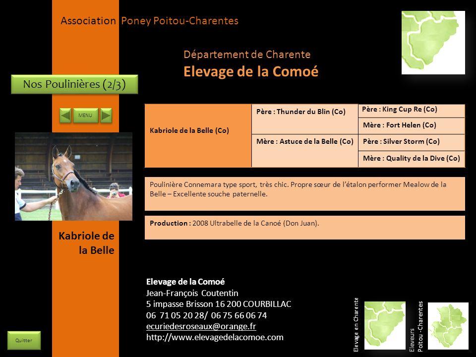 Elevage de la Comoé Département de Charente Nos Poulinières (2/3)