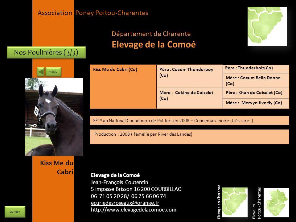 Elevage de la Comoé Département de Charente Nos Poulinières (3/3)