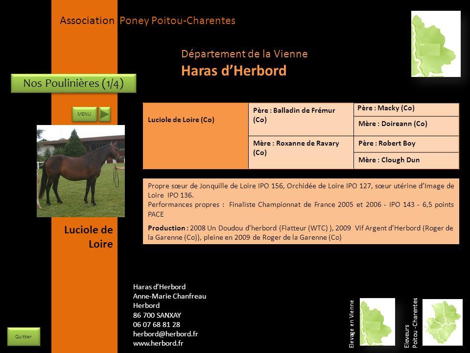 Haras d'Herbord Département de la Vienne Nos Poulinières (1/4)