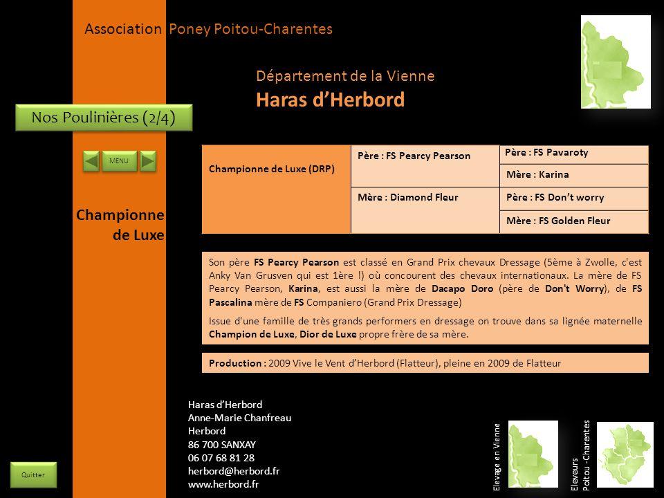 Haras d'Herbord Département de la Vienne Nos Poulinières (2/4)